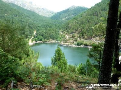 Pinares de la Angostura en Piedralaves;viajes de trekking viajes de semana santa puente mayo